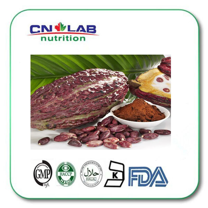 1000G Natural Cocoa extract/Pure Cocoa powder/Cocoa bean extract 20% Theobromine with best price pure natural radix sophorae flavescentis extarct kuh seng extract 100g lot