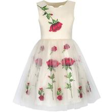 Sunny Fashion Girls Dress Champagne Rose Flower Embroidery Heart Shape Back 2017 Summer Princess Wedding Party Dresses Size 7-14