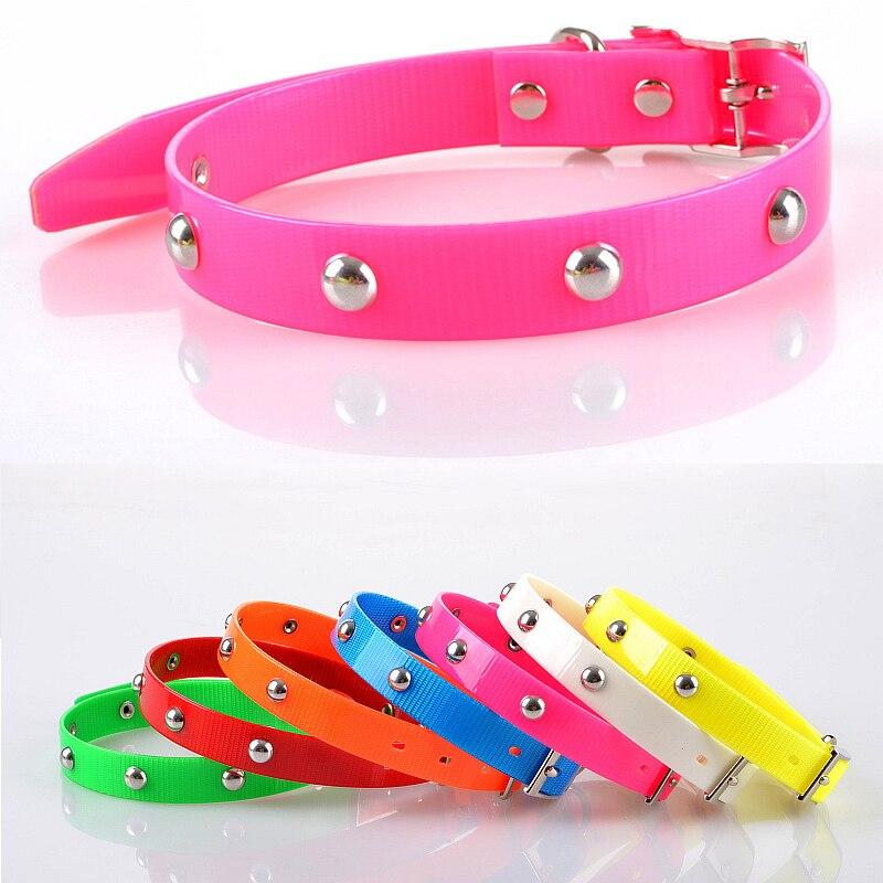 Nuevo diseño Impermeable Collar de Perro De Plástico Pequeños Collares de Perro