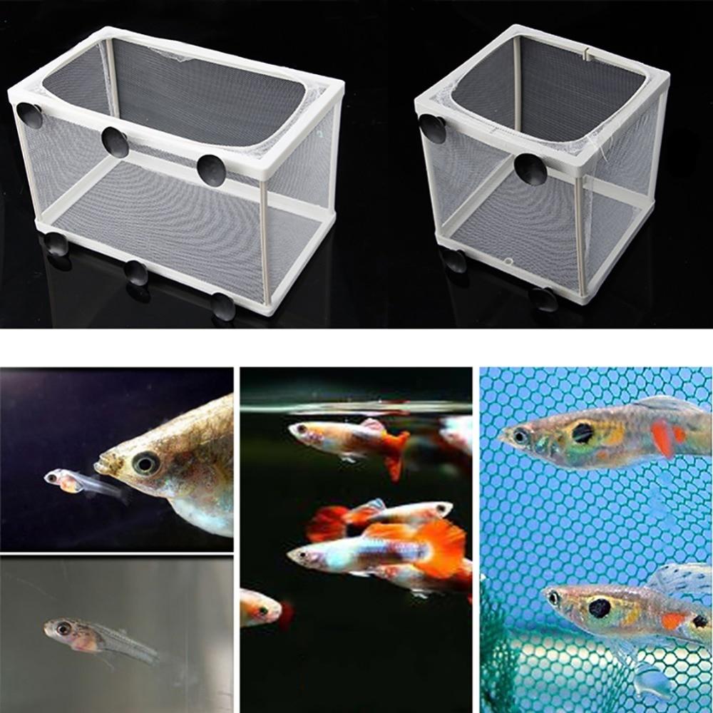 Fish Tank Aquarium Breeding Guppy Breeder Fish Baby Gauze Trap Box Isolator S/L Compact