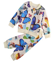 Baby Sets Boys Girls Butterflies pattern clothing sets Children Outwear Jackets With Zipper + Pants 2pcs Suit Kids Outfits set(China)