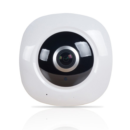 1.3MP Fisheye Lens Panoramic View Cameras