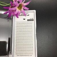 Groothandelsprijs 5 trays 2D premade fans lash volume wimper C D wave 0.07/0.10mm 2D individuele wimper extensions valse wimpers