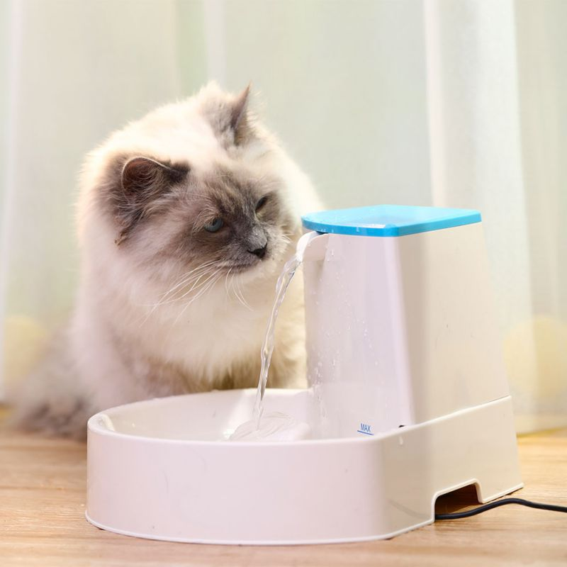 Automatic Luminous Pets Water Fountain For Cats Fountain Dogs Usb Electric Water Dispenser Drinking Bowls For A Cat Dropping #30 Home