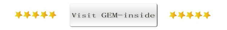 visit-store--GEM