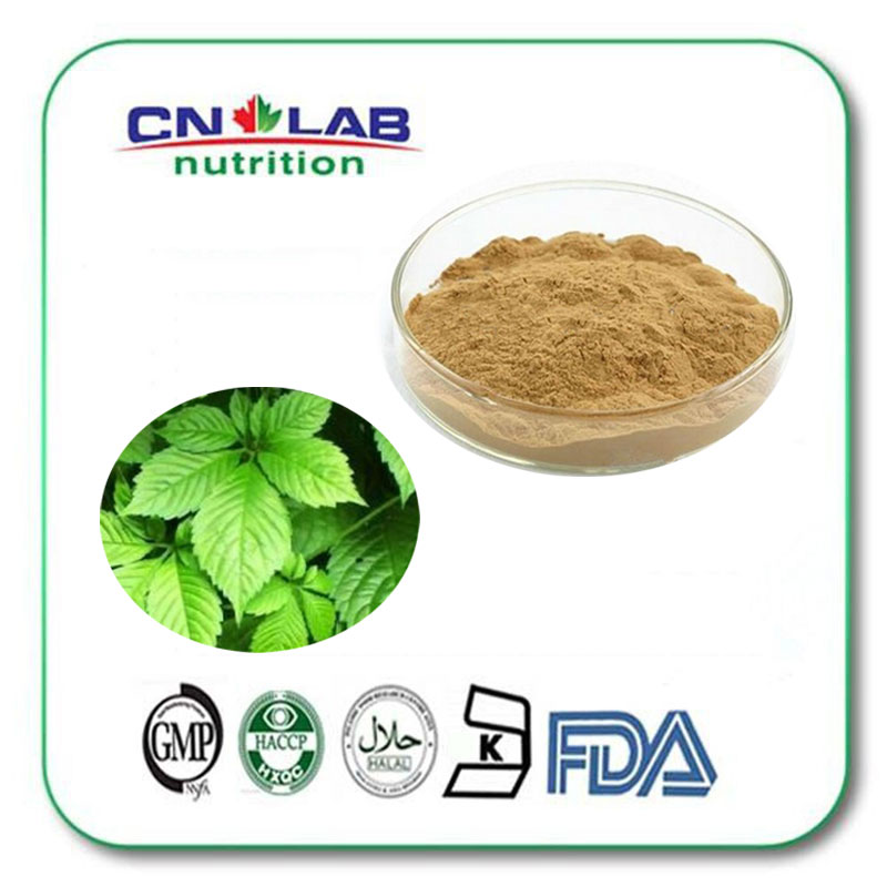 5kg Natural Gynostemma Extract powder 100% Pure Gypenoside 10:1 Gynostemma liquidum tremella fuciformis extract polysaccharides 10 1 powder 100g lot