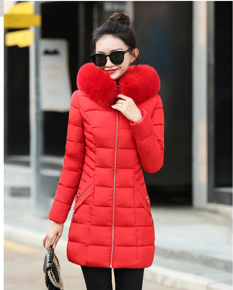 2017 New Winter Cotton-padded Womens Long Hair Collar With A Thin Korean Cotton Jacket