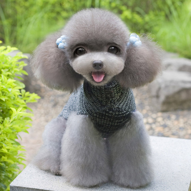 Gray Woolen Pet Winter Warm Knitted Dog Sweater Warm And Airtight