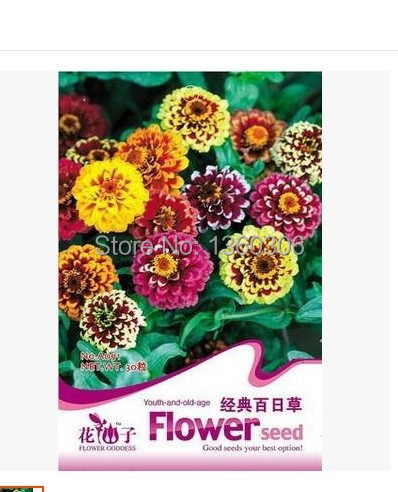 Beautiful faery seed packet The classic one hundred g Q