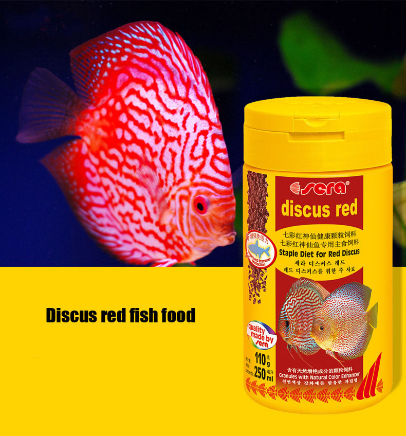 Buy discus fish food aquarium pigeon for Discus fish food