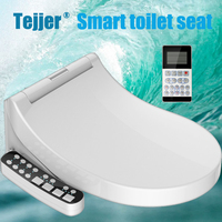 Tejjer Small Whale Washing Intelligent Temperature Smart Toilet Cover Seat With Led Night Light Ipx4 Waterproof