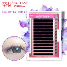 BRILLANT Japanese Colour Grafting False Eyelashes COS Stage 0.07 Coarse Mixing Gradual Change Color Plant Eyelash Violet