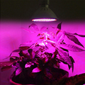 200 LEDs E27 LED Plant Grow Lights Lamp Plant Growing Lights Bulbs Hydroponics Systems for Flower,Plant,Vegetable Growing