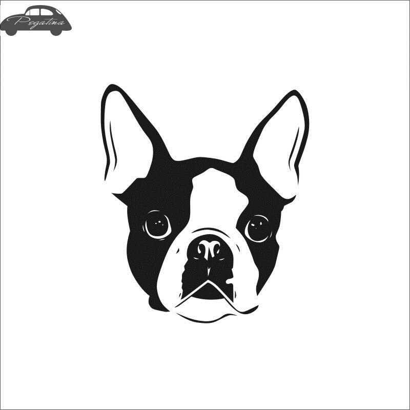Pegatina Car Boston Terrier Dog Sticker Pet Shop Decal Posters Vinyl Wall Art Decals Quadro Parede Decor Mural Pet Shop Sticker
