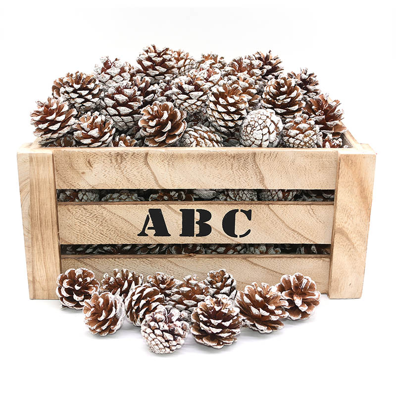 10pcs/lot Natural Pine Cone Christmas Tree Decoration Pinecone Xmas Bauble New Year DIY Party Decoration Photo Props Accessories