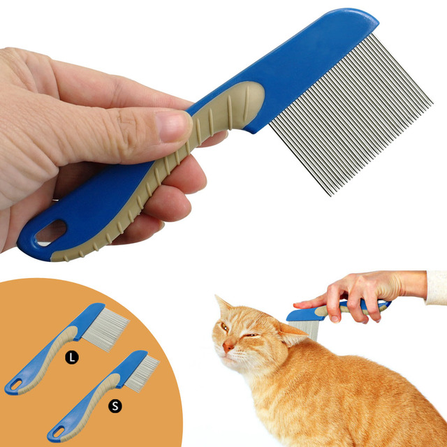 5 Tips For Grooming Long Haired Cats