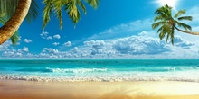 Laeacco Tropical Palm Tree Sea Beach Waves Summer Holiday Blue Sky Scenic Photography Background For Photo Backdrop Studio