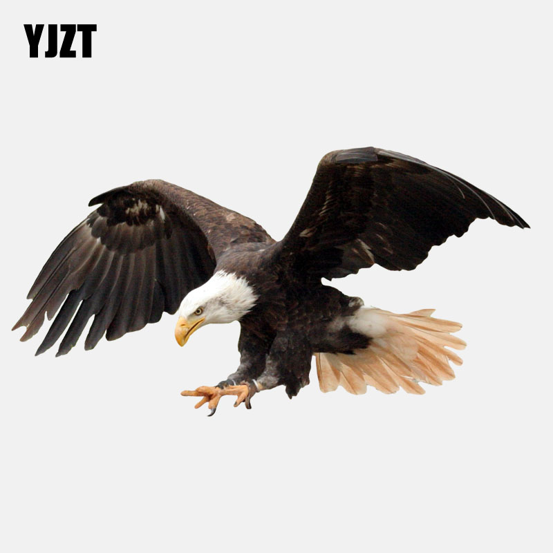 YJZT 17.7CM*9.2CM  Flying Fierce Eagle PVC High Quality Car Sticker 11-01190