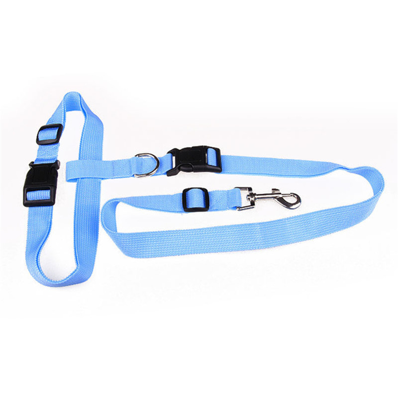 New-Adjustable-nylon-pet-led-dog-collar-harness-for-small-dogs-Running-Jogging-Sport-Walking-leash.jpg_640x640