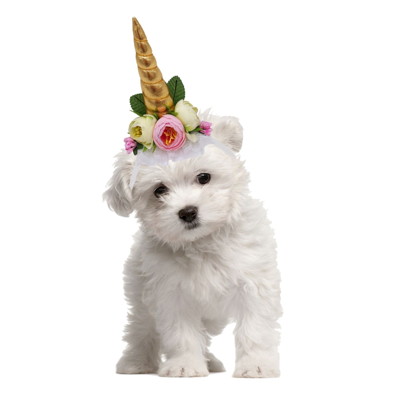 2018 Dog Cat Hat Cap Cosplay Corner For Puppy Cats Dogs Unicorn Horn