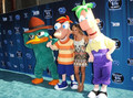 OISKPhineas Flynn,Ferb Fletcher,Perry Mascot Costume Cartoon Character halloween christmas Party Supplies