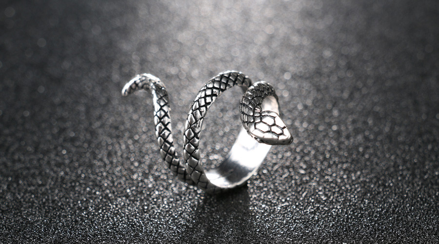 HTB1xr0iOXXXXXcTapXXq6xXFXXXw - My Little Snake Ring