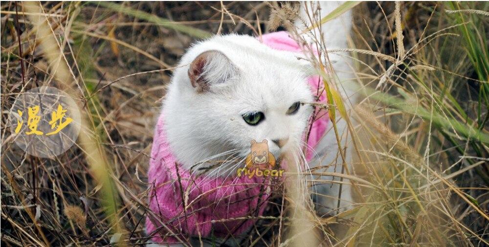 Roupas p gato