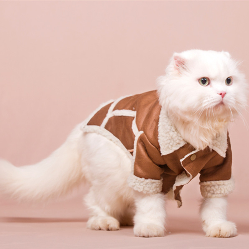 Cool Handsome Cat Jacket Autumn Winter Clothes To Keep Warm The Cat Costume Garfield's Fall Jacket Cat Kitty Pet Clothing