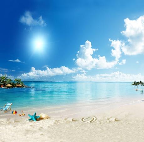 8x8ft Palm Tree Island Sabbia Spiaggia Sedia Verde Blu Conchiglie Di