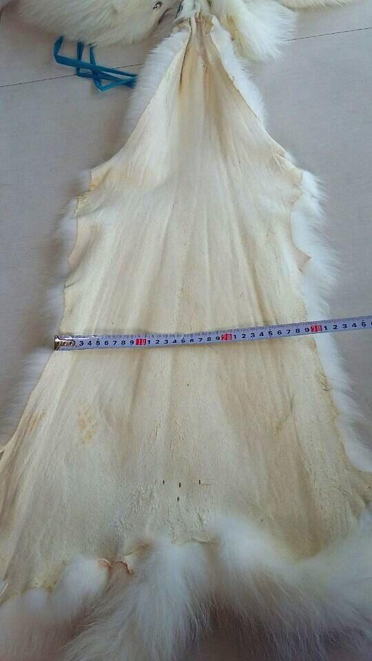 Véritable peau de peau de raton laveur blanc naturel tannée véritable/fourrure de bronzage de raton laveur avec avantage - 5