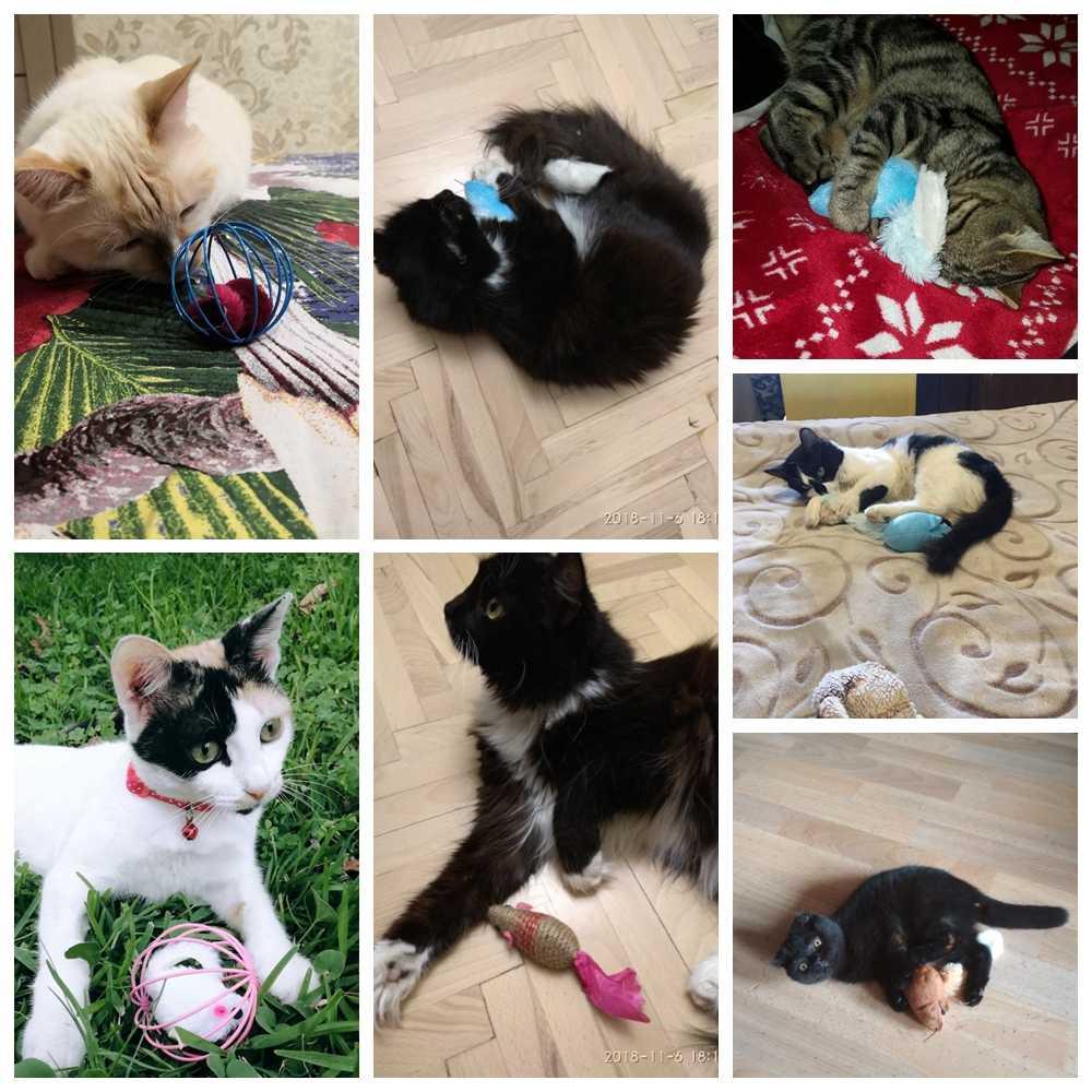 Gatto Giocattolo Catnip Mouse Giocattoli per I Gatti Interactive Cat Giocattoli Palla Gattino Pet Peluche Gatto Divertente di Alimentazione Solida Formazione toy Gioco Del Gioco