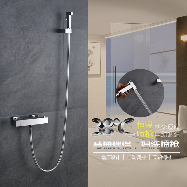 Toilet Spray Hand Held Portable Shower Brushed Thermostatic Toliet ...