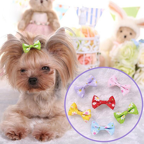 6 Pcs Dog Cat Puppy Hair Clips Hair Bow Tie Flower Bowknot Hairpin Pet Grooming