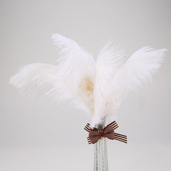 100PCS/Set 20-25CM Beautiful Luxury Style Ostrich Feathers DIY Wedding Party Decorative Celebration Feathers Black/White 1