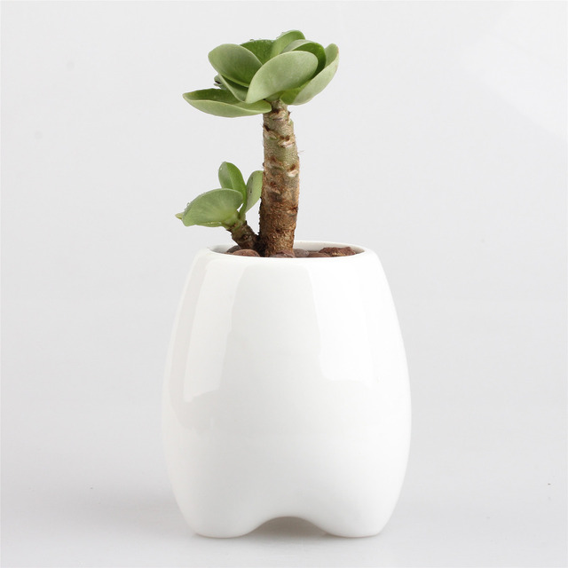 4 Pcs Table De Bande Dessinee Dents Forme Blanc Petit Pot De Fleur