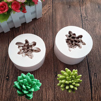 Succulent Potting Soap Mould Sugarcraft Flexible Silicone Cookie Mold Chocolate Molds Botanic Plant