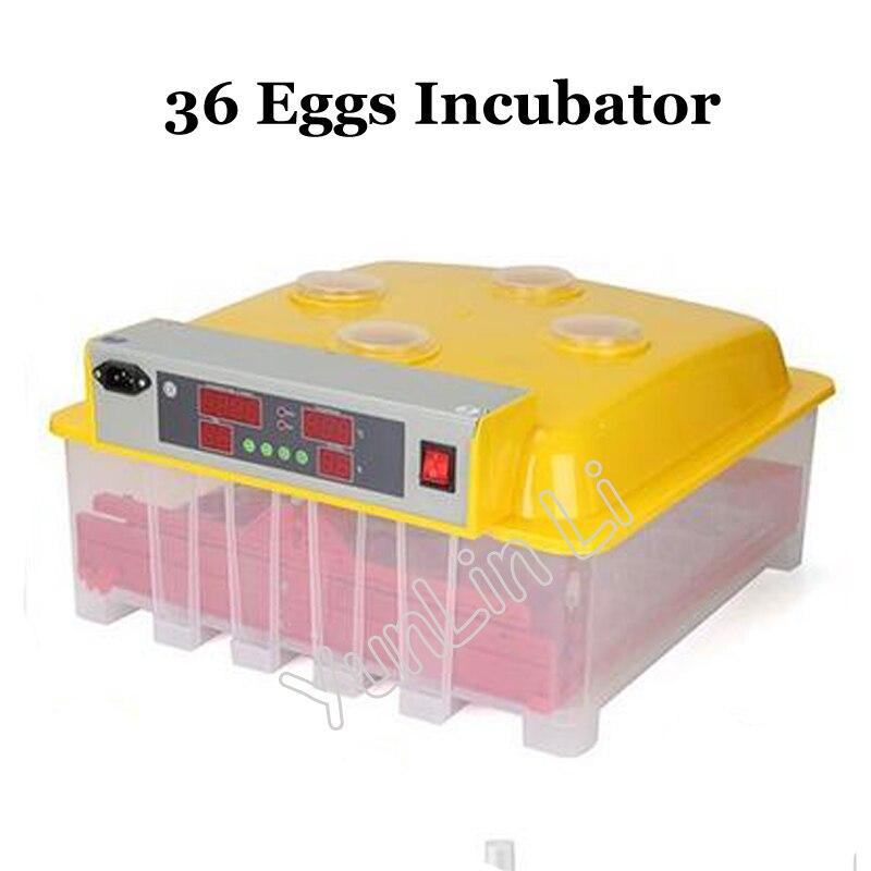 36 Intelligent Eggs Incubator Mini Incubator 144 Quail Eggs Incubator 36 Chicken Incubator WQ-36 цена и фото