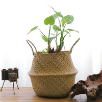 Seagrass Belly Storage Basket Handmade Straw Organizer Plant Pot Garden Flower Pot Planter Nursery Pots Handle