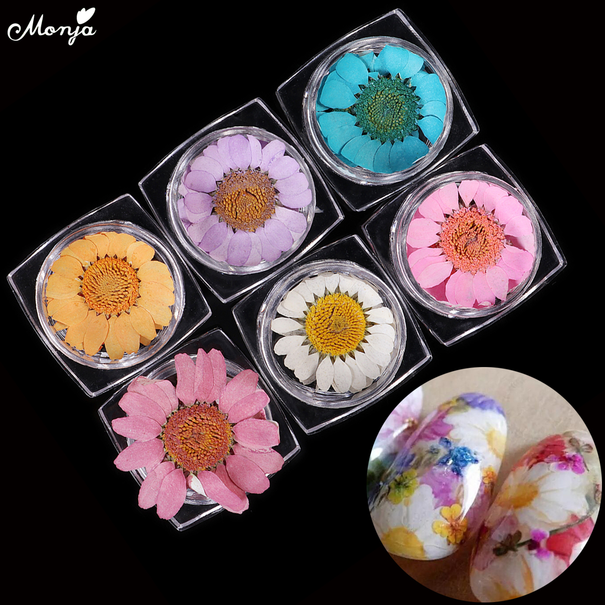 6 Colors Real Natural Petal Dry Dried Daisy Flower 3D Vivid Blooming ...