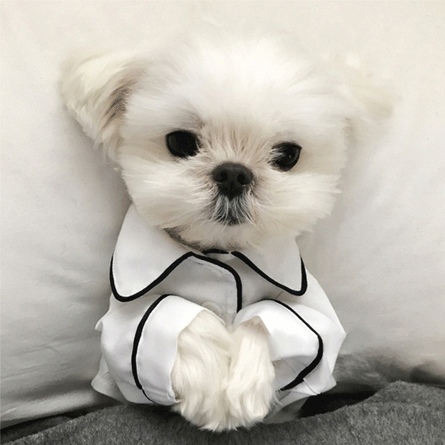 Luxury Clothes for Dog Fashion Dog Pajamas Pet Clothing for Small Medium Dogs Clothes Coat Yorkies Chihuahua Bulldogs Jacket 20D 1
