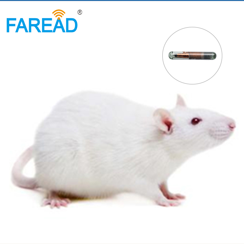 X40pcs ISO11784 /ISO11785 EM4305 1.4*8mm Glass Capsule Passive RFID Tag Microchip For Rabbit Fish Small Pets Animal