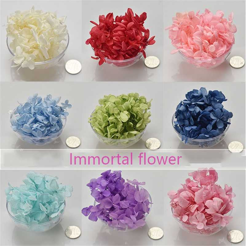 Immortal Flower Candle Making Supplies Hydrangea Macrophylla Candle Wax DIY Material Dried Flower Handmade B Grade 6g