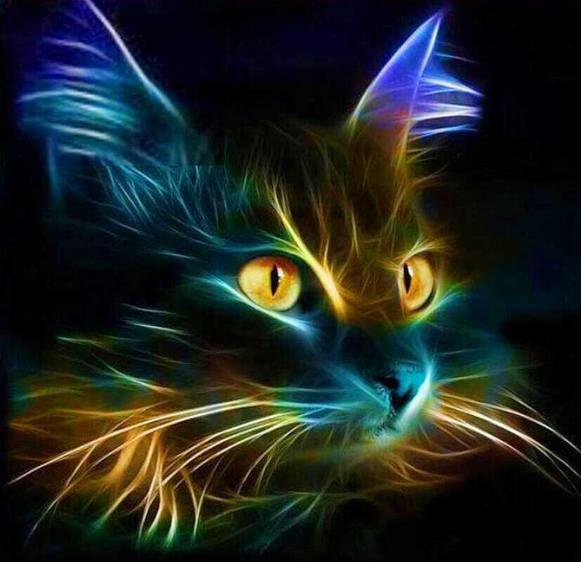 Tranh Gắn Đá Mèo Con DIY 3D Kim Cương Thêu Hoạt Hình Mèo Đen Bộ Cho Thêu Với Hạt Bóng Khảm Vẽ