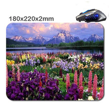 HOT SALES Custom Antiskid 3 D Grand Teton National Park, Mount Moran  Office Accessory Tablet And Mini PC Mouse Pad As Gift