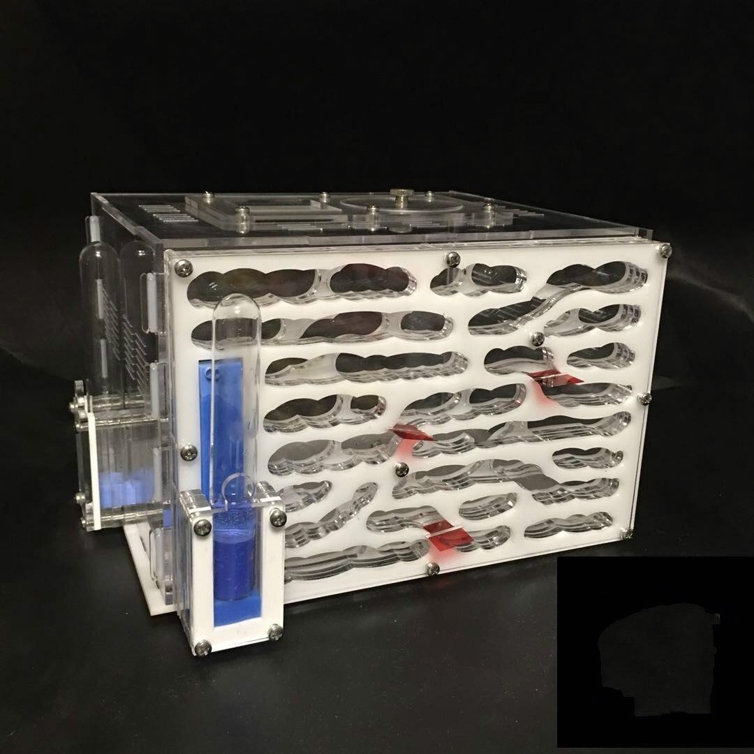 1PCS Acrylic Ant Nest with Large Balcony Workshop Ant Area Ant Farm Acrylic