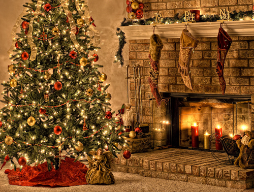 Christmas Photography Backdrop Background Photo Studio Indoor Tree Fireplace XT-4697