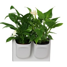 Vertical Greening Combination Wall-mounted Flower Pots Resin Two-hole Plant Pot Outdoor Indoor plants Wall decoration Planter