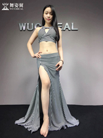 Hot Sale New Oriental Dance Costumes Wuchieal woman Belly Dance Costume top+skirt suits performance Clothes QC2778