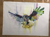 Decorative Art Handmade Owl Watercolor Oil Painting On Canvas Living Room Home Decor Wall Paintings Night Owl Animal Pictures