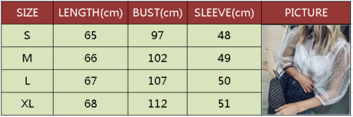See through Women Mesh Sheer Blouse Top Shirts Transparent Lace Puff Sleeve Tops Woman Summer Casual